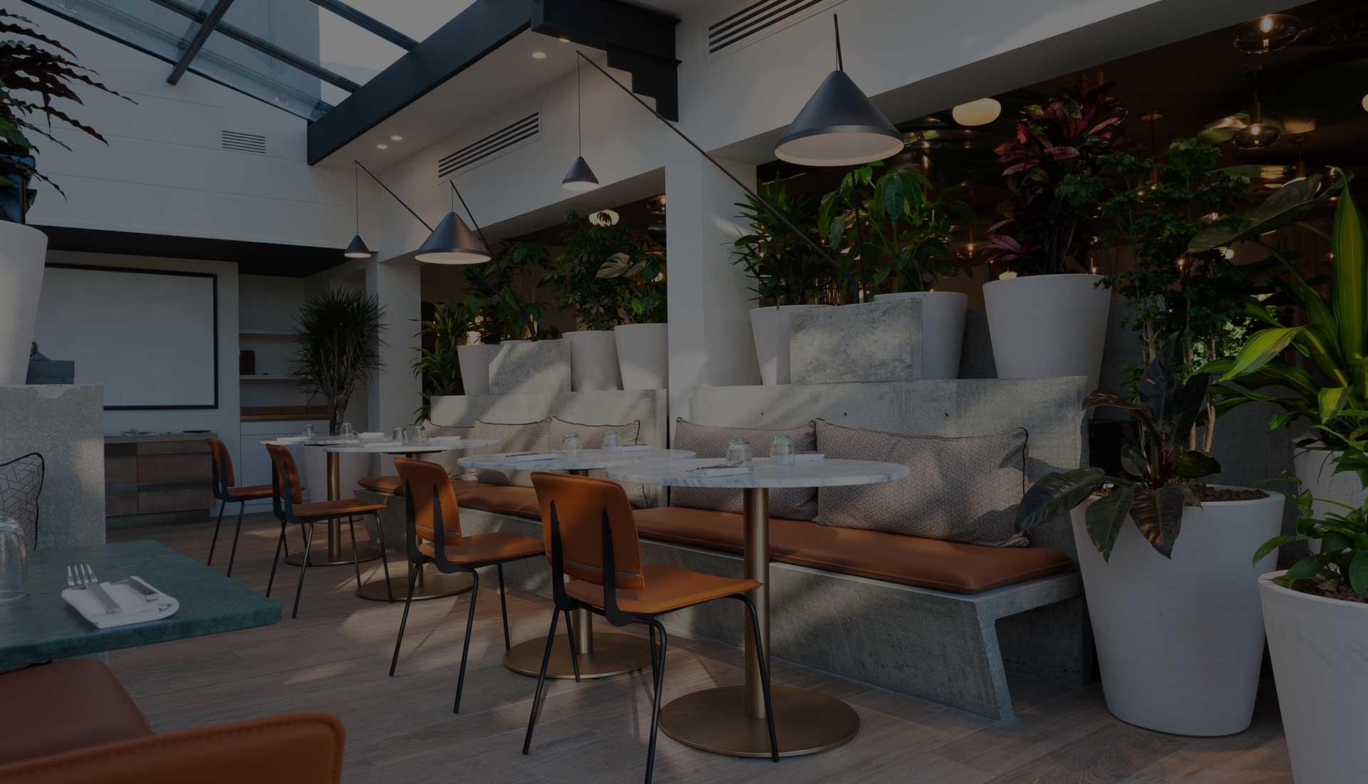 Restaurant Du Chef Yannick Delpech Des Roses Et Des Orties